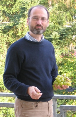 Prof. Dr. Sebastian Brather